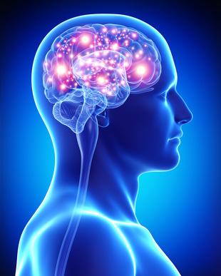 Abnehmplan und Gehirn